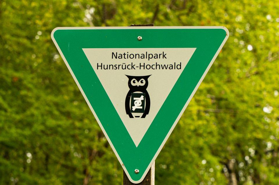 Besuch im Hunsrück-Hochwald Nationalpark